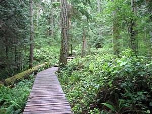 A mother daughter walk through the woods at Milner's Garden, B.C.