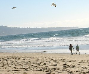 Mothers Day at the beach. Gulls flying over the ocean. Two people walking at the edge of the sand